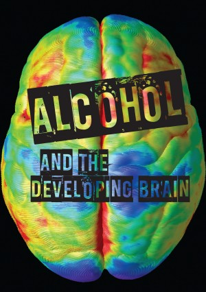 Alcohol and the developing brain - NDARC (2013)