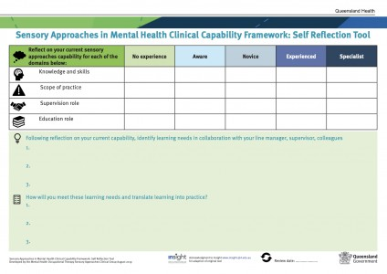 Sensory Approaches in Mental Health Clinical Capability Framework: Self Reflection Tool (MHOTSACG)